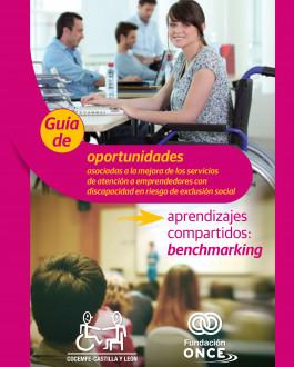 Guia de oportunidades asociadas a la mejora de los servicios de atención a emprendedores con discapacidad en riesgo de exclusión social