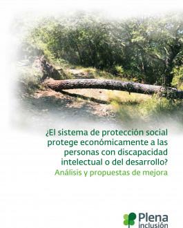 ¿El sistema de protección social protege económicamente a las personas con discapacidad intelectual o del desarrollo? Análisis y propuestas de mejora