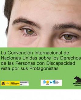 Portada del Libro ingles La Convención Internacional de Naciones Unidas sobre los Derechos de las Personas con Discapacidad vista por sus Protagonistas