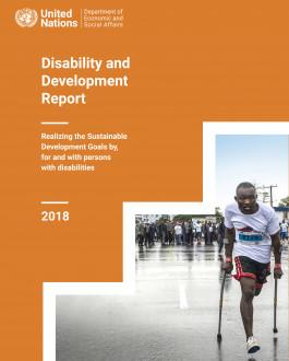 Portada Disability and Development Report